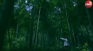 【公益】长安福特中华传统24节气公益视频-立夏篇