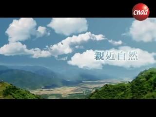 【公益广告】环保二十年-一日五善公益广告