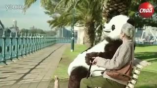 【公益广告】CCTV公益片:文明出游之熊猫篇