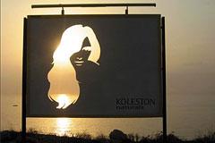 德国威娜Koleston Naturals染发剂创意广告欣赏