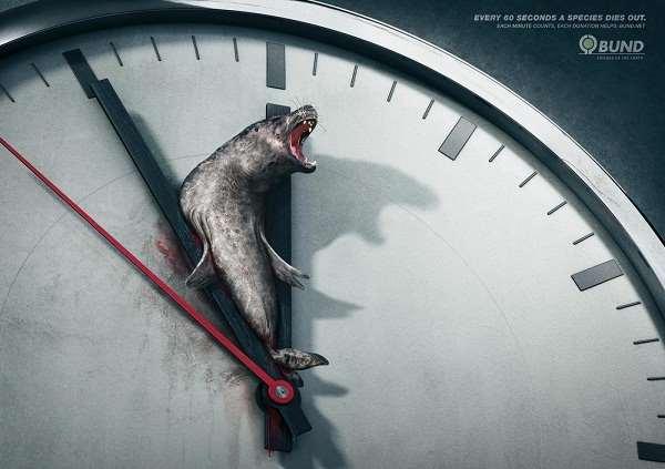 自然保护公益广告欣赏