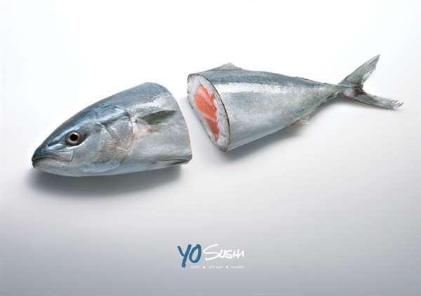 Tuna 金枪鱼