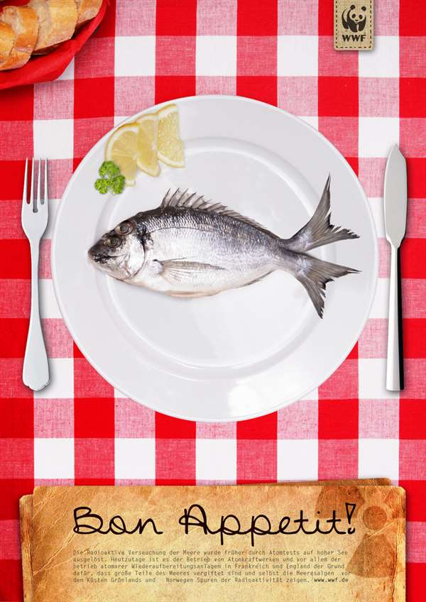 盘子里的鱼