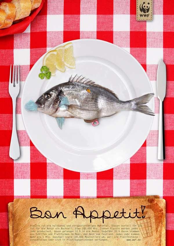 鱼环保广告