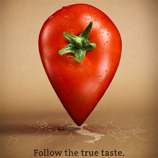 Follow the ture taste