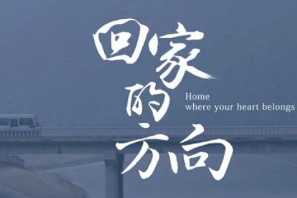 年末感人走心广告《回家的方向》