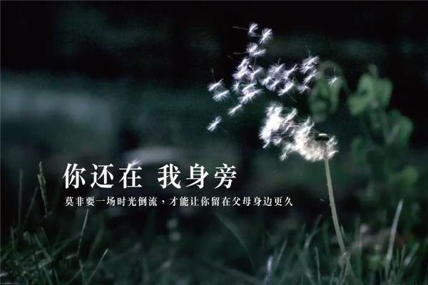 央视2015春节诗意广告短片《时光倒流》
