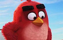 愤怒小鸟3D动画电影首支宣传广告-人气手机游戏《愤怒的小鸟》将要推出动画电影,昨天片方正式公开了本作的首部宣传片,本次的宣传片不仅公开了电影的剧情,还特别选用了两首经典老歌作为背景音乐。
